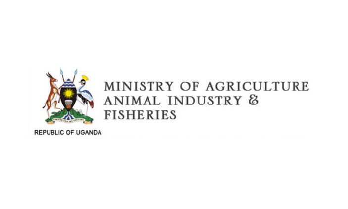 MAAIF Uganda Jobs 2020 MAAIF Jobs available driving jobs uganda