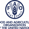 FAO Uganda Jobs 2018 UN Internships for Ugandans