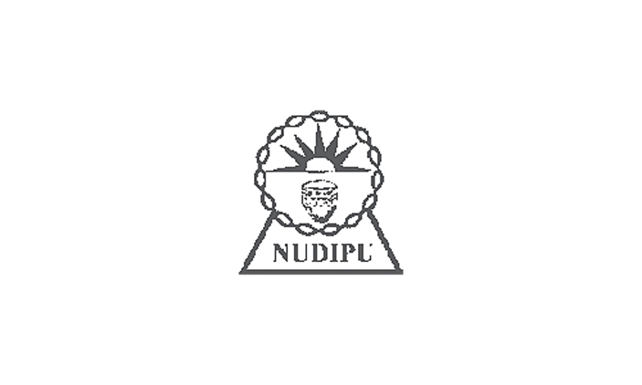 NUDIPU Jobs 2020