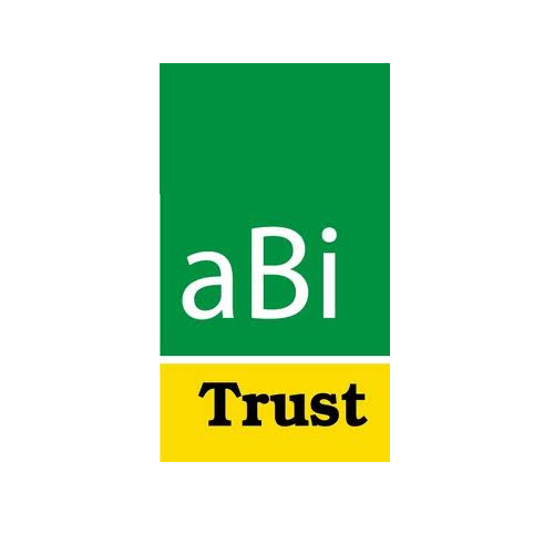 ABi Development Limited Jobs 2021